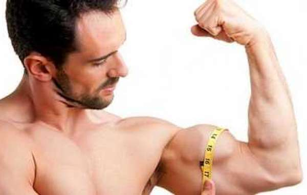 Exactly how to Build Muscle Promptly